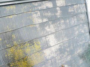 屋根のカビ・コケ高圧洗浄で落ちる?