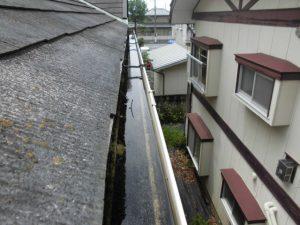 雨樋のつまり